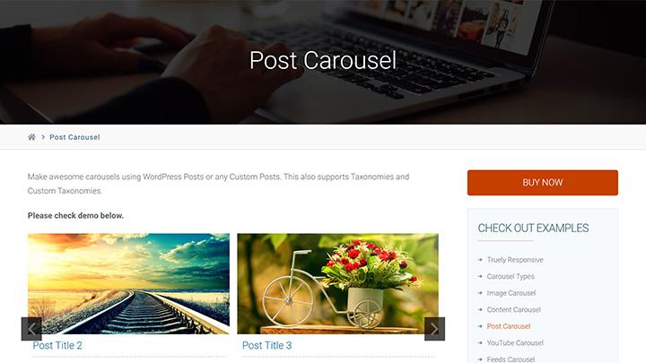 Super Carousel WordPress Post Carousel Example
