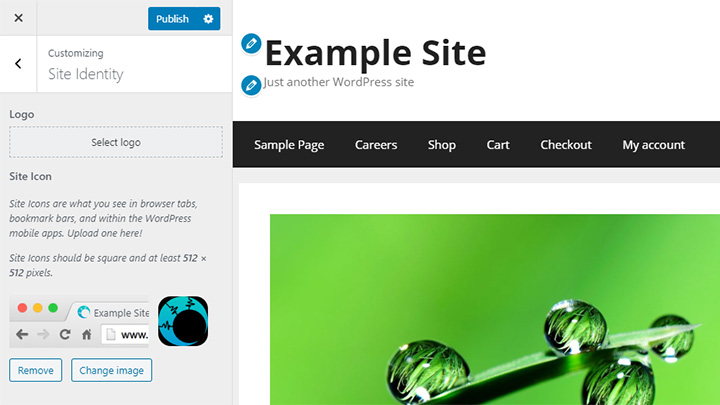 WordPress Site Icon in Customizer