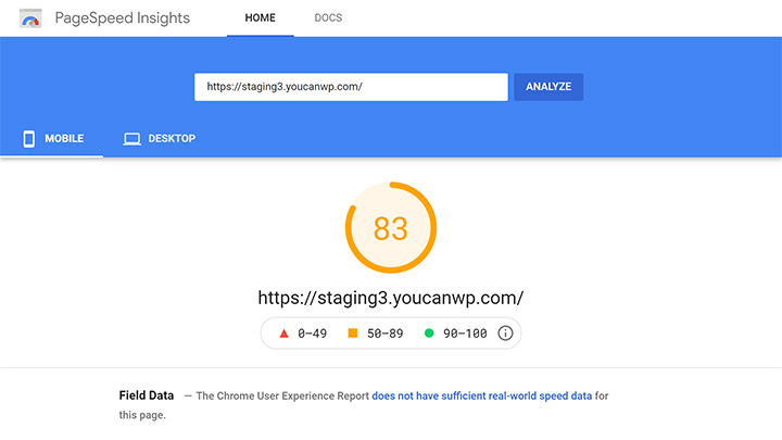 PageSpeed Score After SG Optimizer