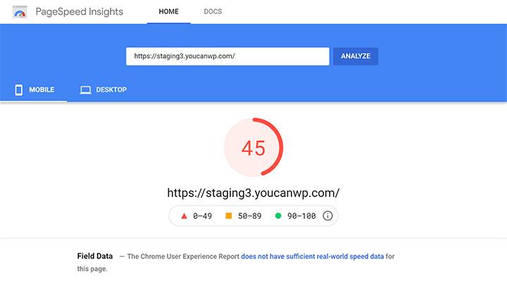 WordPress PageSpeed Insights Score Before Optimizations